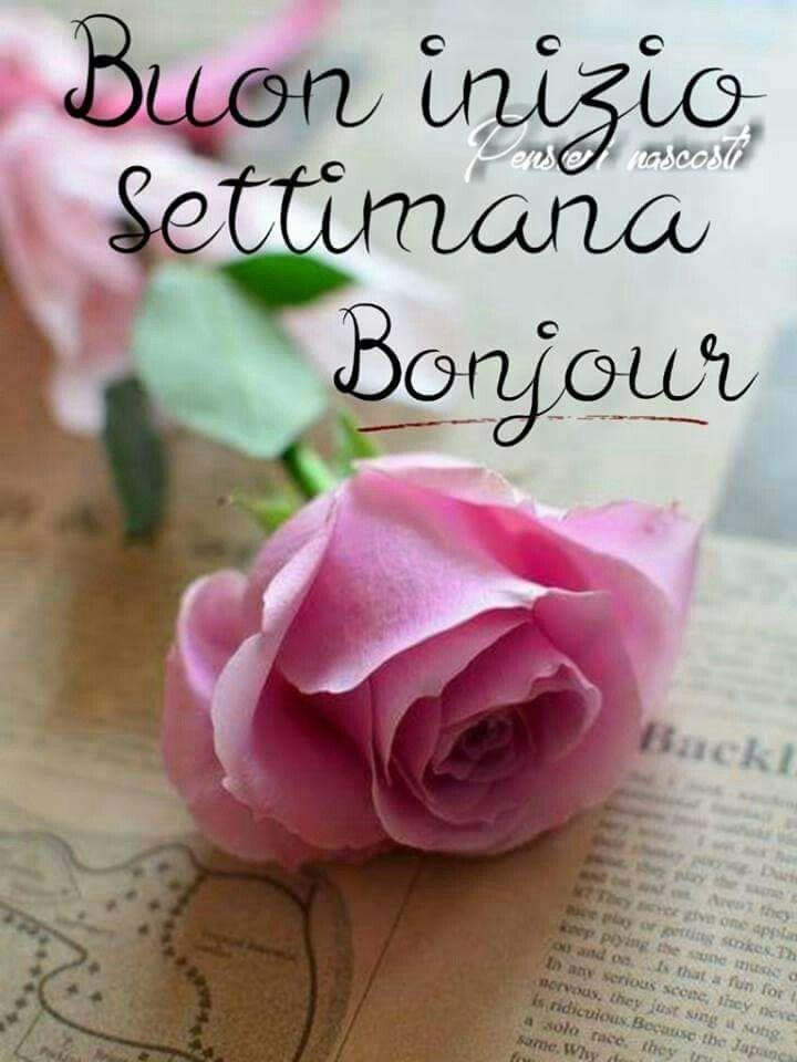 Buon Inizio Settimana Bonjour