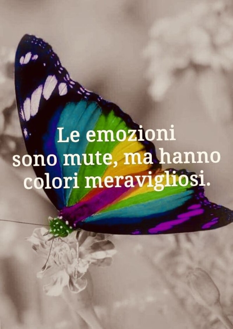 """""""Le emozioni sono mute, ma hanno colori meravigliosi."""" Frasi Corte"""