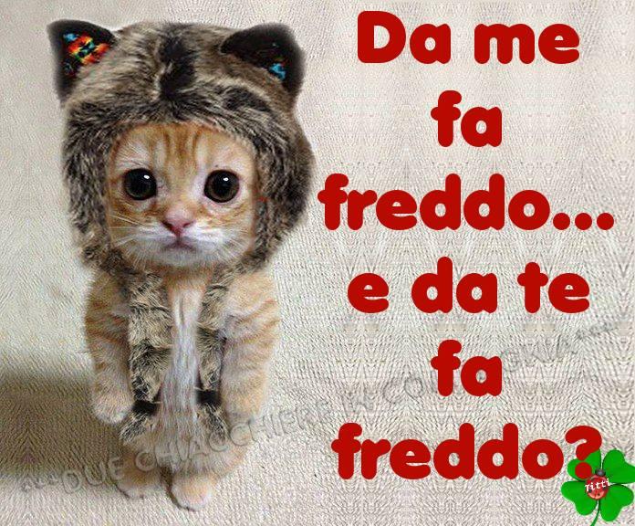 """""""Da me Fa Freddo... e da te?"""""""