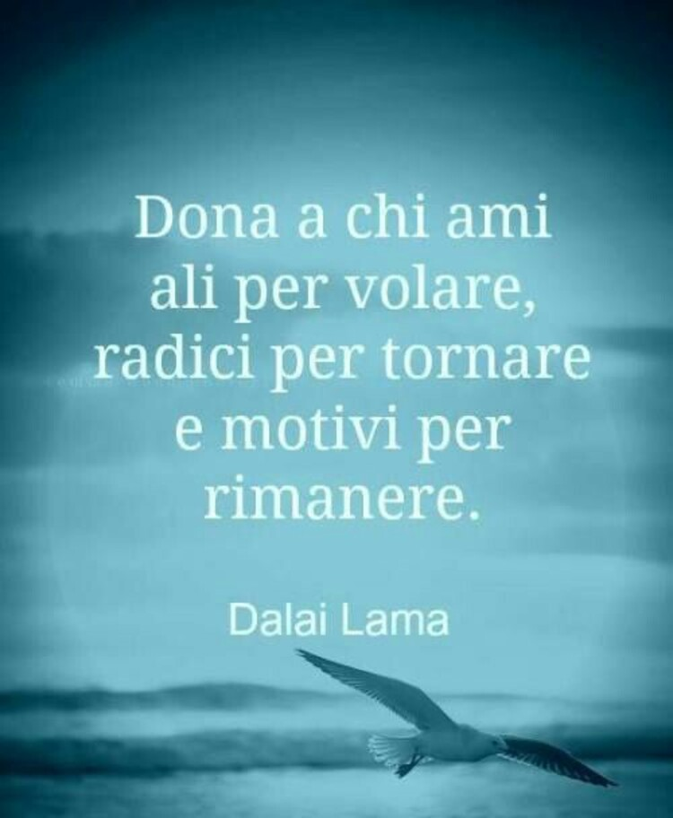 """""""Dona a chi ami ali per volare, radici per tornare e motivi per rimanere."""" Dalai Lama - Aforismi"""