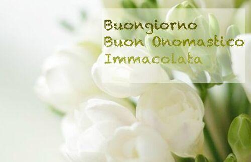 """""""Buongiorno Buon Onomastico Immacolata"""""""