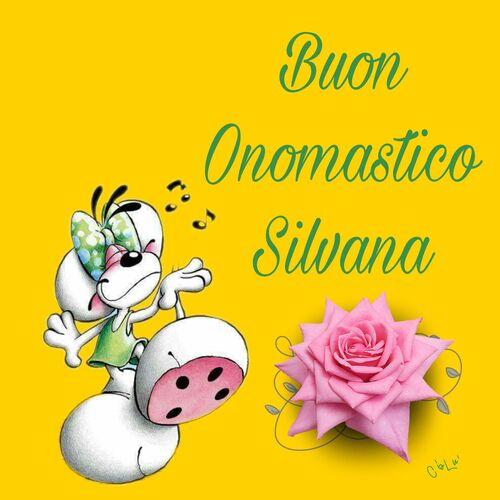 """Buon Onomastico Silvana"""