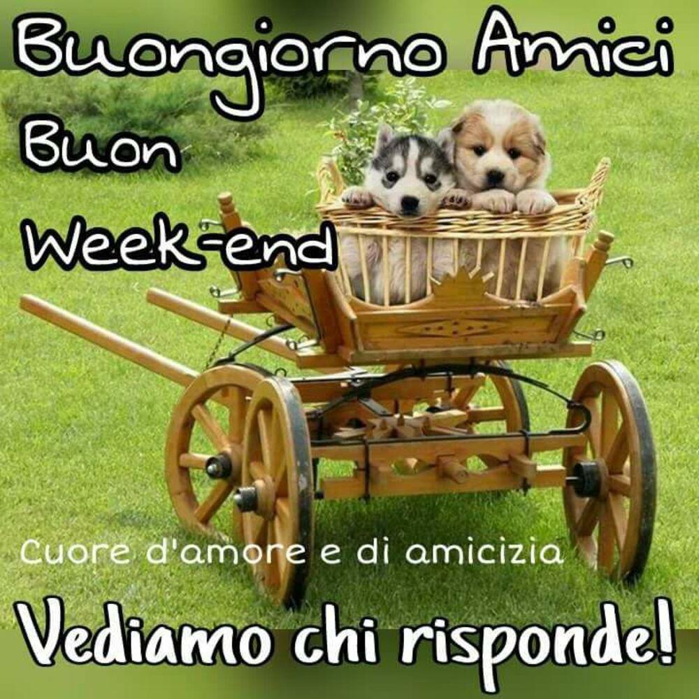Buongiorno Amici Buon Week-end, vediamo chi risponde !