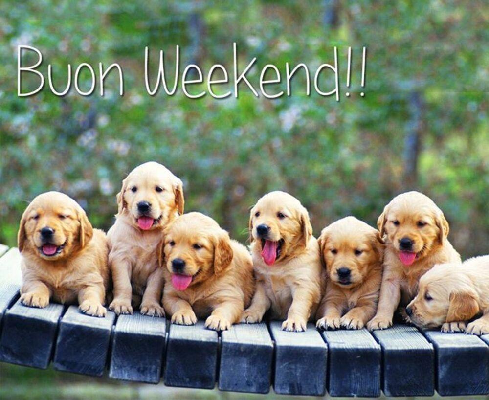 Belle immagini di Buon Weekend