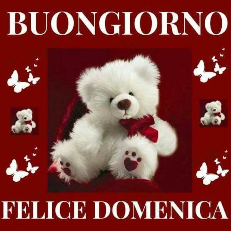 Buongiorno Felice Domenica (Amore Mio)