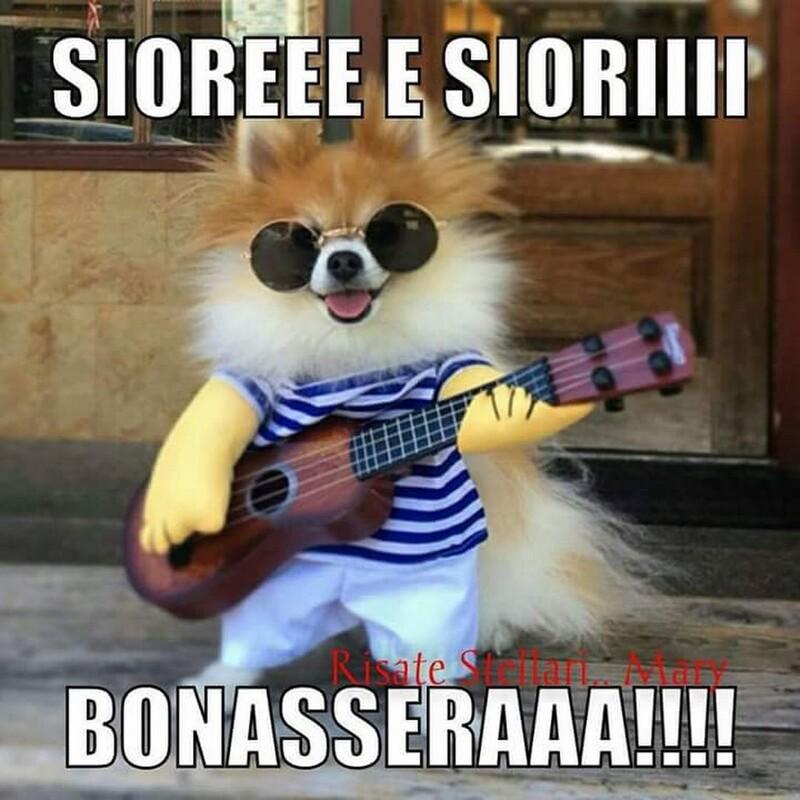 """""""SIOREEE E SIORIII BONASERAAA!!!!"""
