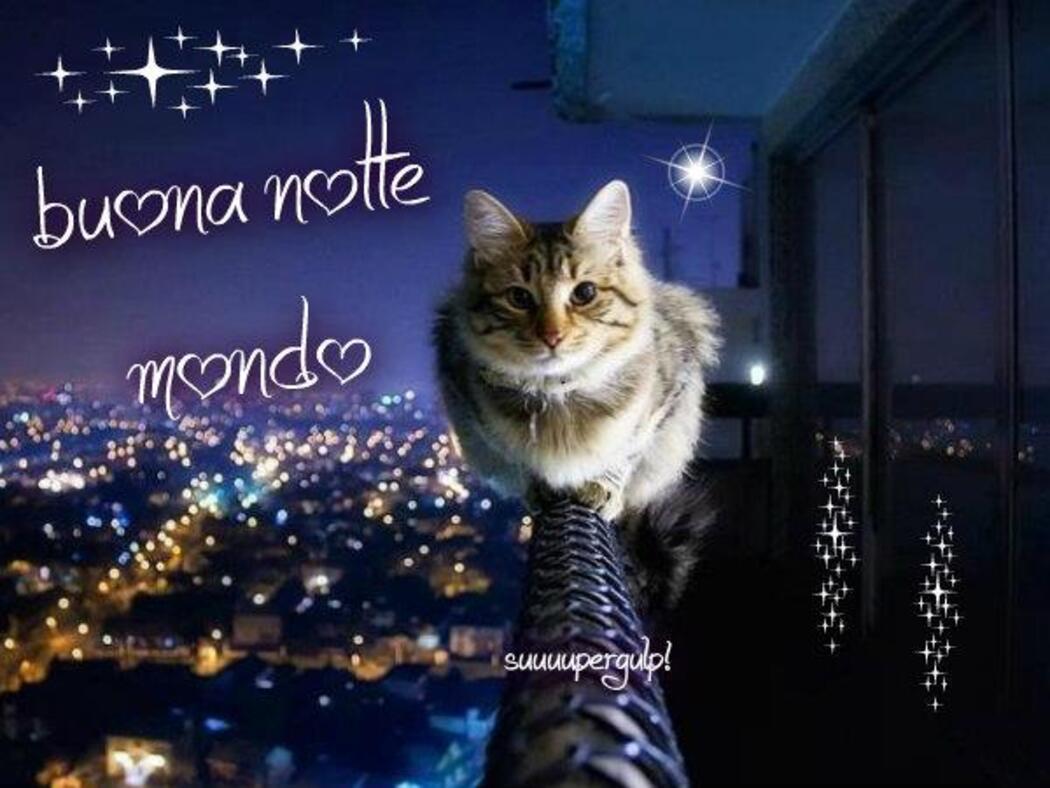 buonanotte mondo
