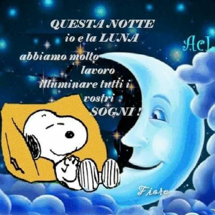 """""""Questa notte io e la Luna abbiamo molto lavoro: illuminare tutti i vostri sogni!"""""""