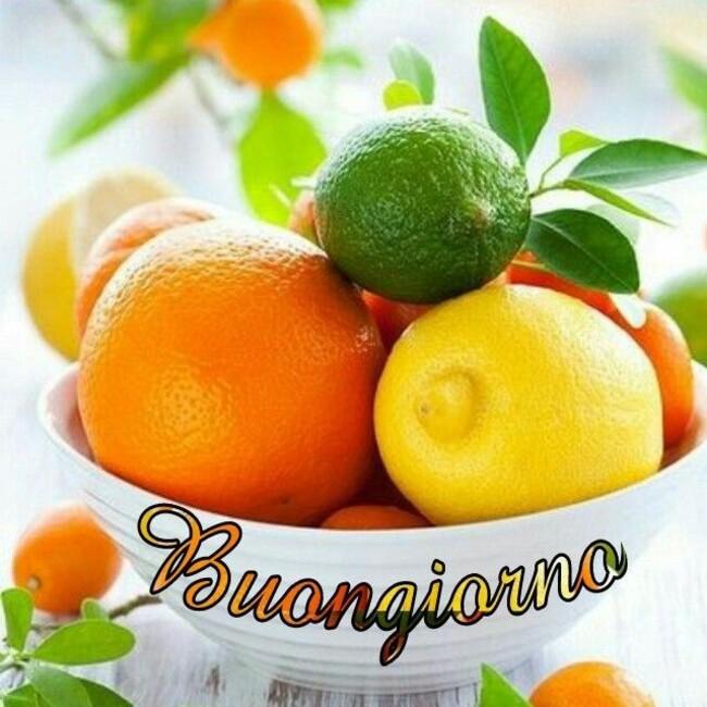 Immagini del Buongiorno con le arance e i limoni