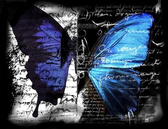 Bellissime immagini di farfalle