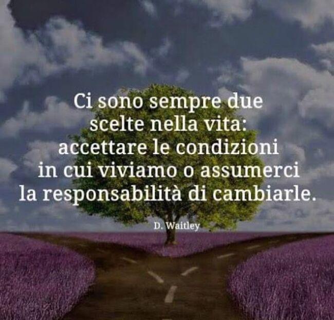 """""""Ci sono sempre due scelte nella vita: accettare le condizioni in cui viviamo o assumerci la responsabilità di cambiarle."""""""