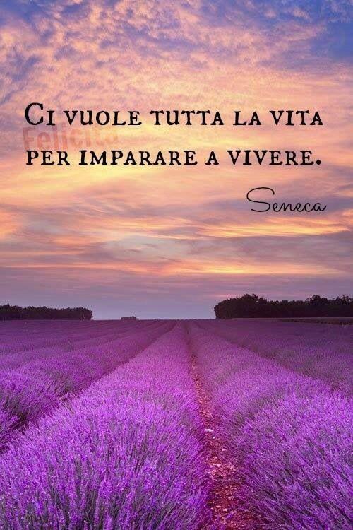 """""""Ci vuole tutta la vita per imparare a vivere."""" - frasi corte Seneca"""