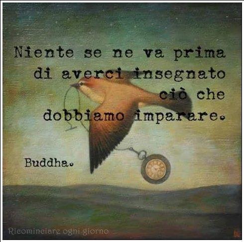 """""""Niente se ne va prima di averci insegnato ciò che dobbiamo imparare. - Buddha"""