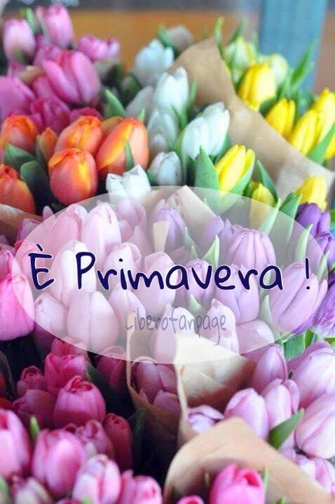 """""""E' Primavera !"""""""