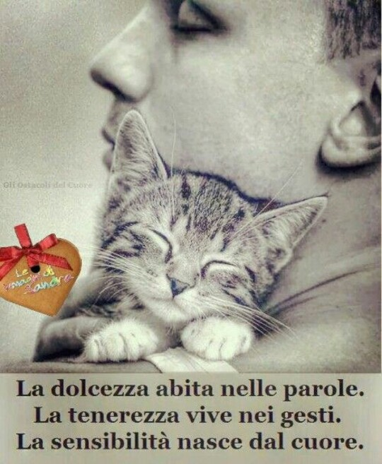 """""""La dolcezza abita nelle parole. La tenerezza vive nei gesti. La sensibilità nasce dal cuore."""""""