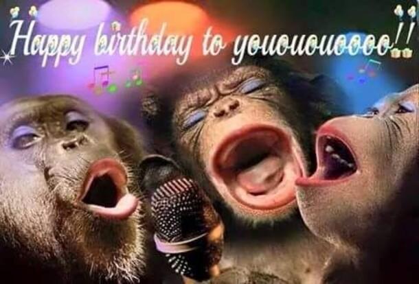 """""""Happy Birthday to you !!!"""" - immagini di Buon Compleanno da ridere"""