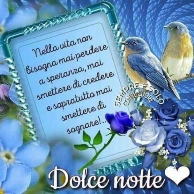 """""""Nella vita non bisogna mai perdere la speranza, mai smettere di credere e soprattutto mai di sognare... Dolce Notte"""""""