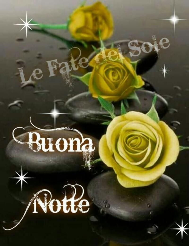 Buonanotte Con I Fiori 10 Foto Con Frasi Belle Bgiorno It
