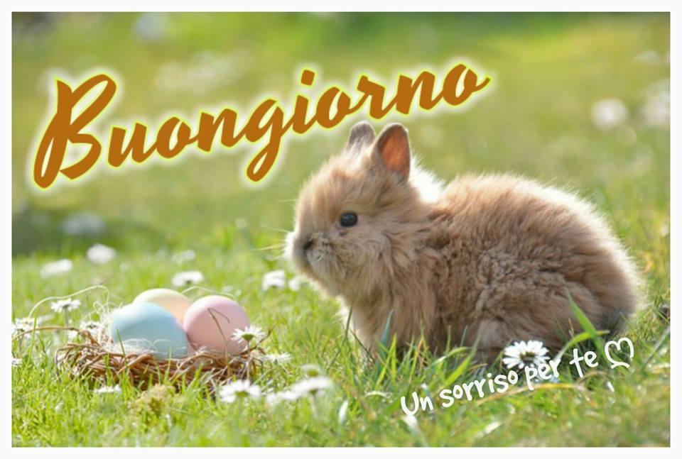 """Un sorriso per te - """"Buongiorno Pasqua"""""""