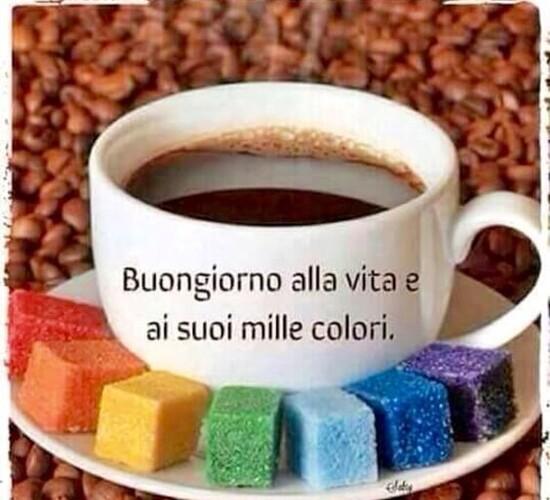 """""""Buona Giornata alla vita e ai suoi mille colori"""""""
