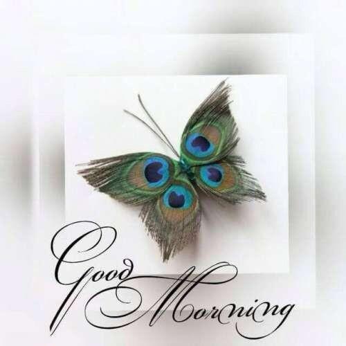 """Bellissime immagini da condividere - """"Good Morning"""""""