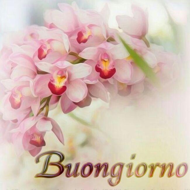Foto di Buongiorno con i fiori della Primavera