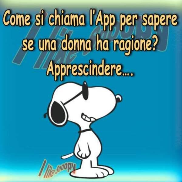 Immagini Divertenti Snoopy Le 10 Piu Esilaranti Bgiorno It