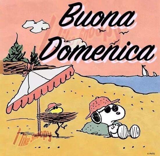 Vignette della Buona Domenica col simpatico Snoopy