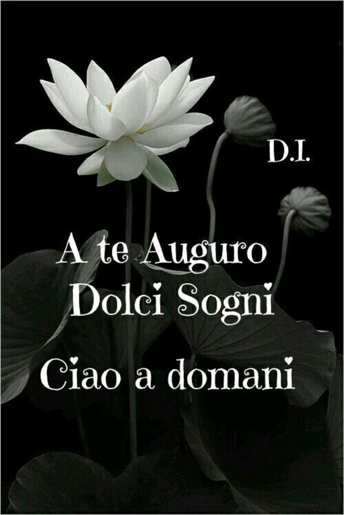 """""""A Te auguro Dolci Sogni, Ciao a Domani"""""""