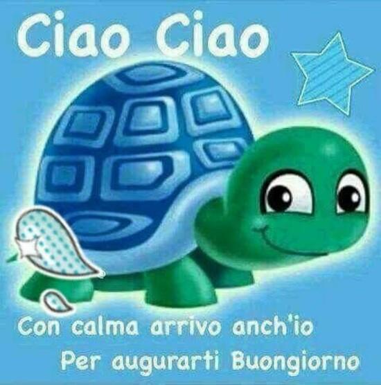 """""""Ciao Ciao... Con calma arrivo anch'io per augurarti Buongiorno"""""""