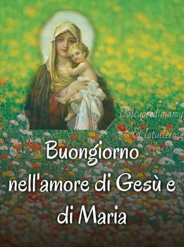 """""""Buongiorno nell'amore di Gesù e di Maria"""""""