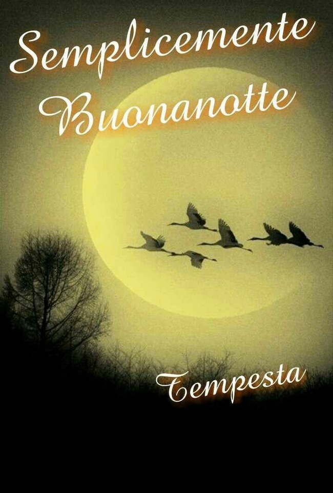 Foto belle per augurare Buona Notte su Facebook