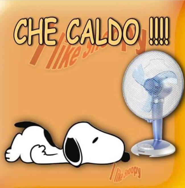 """""""Che Caldo che Fa !!!"""" - Snoopy"""