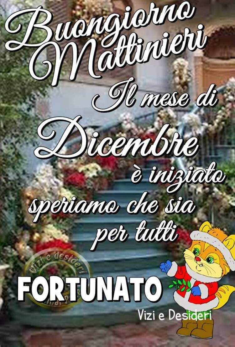 """""""Buongiorno Mattinieri, il mese di Dicembre è iniziato, speriamo che sia per tutti fortunato!"""""""