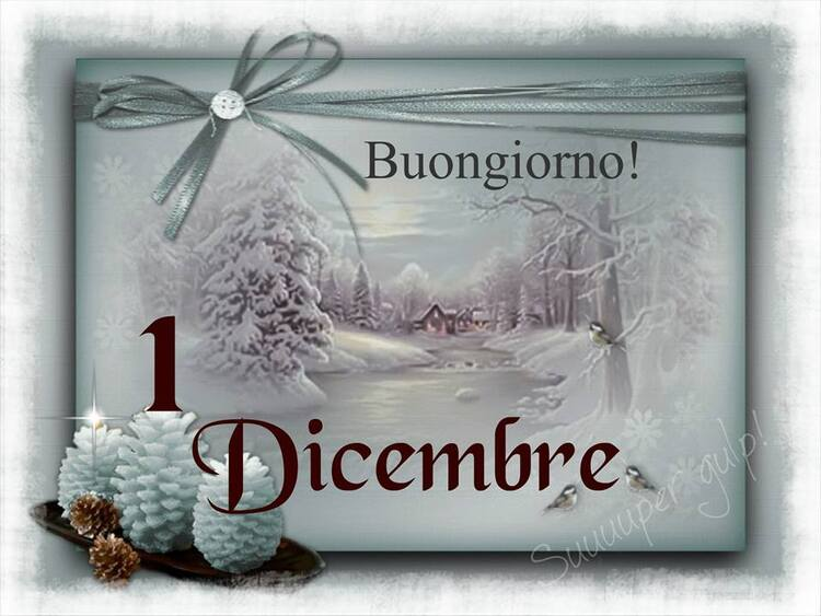 """""""Buongiorno! 1° Dicembre"""""""