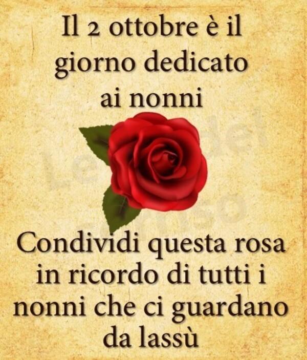 """""""Il 2 Ottobre è il giorno dedicato ai Nonni. Condividi questa rosa in ricordo di tutti i Nonni che ci guardano da lassù"""""""