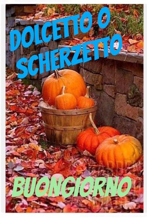 """""""Dolcetto o Scherzetto? Buongiorno"""""""