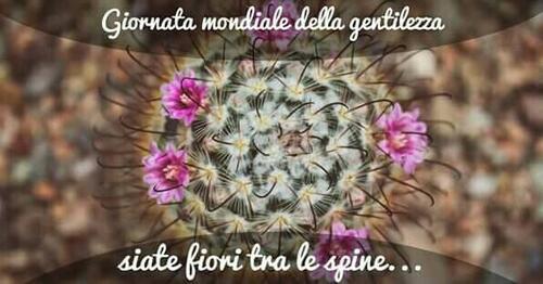 """""""Giornata Mondiale della Gentilezza... Siate fiori tra le spine..."""""""