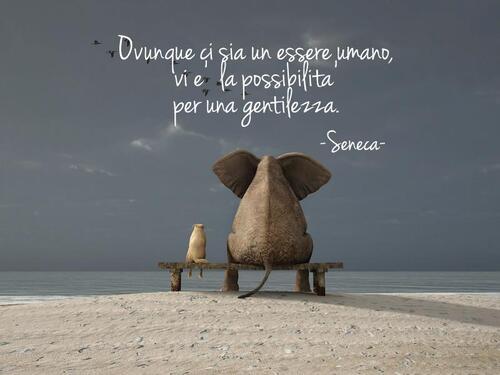 """""""Ovunque vi sia un essere umano, vi è la possibilità per una gentilezza."""" - Seneca"""