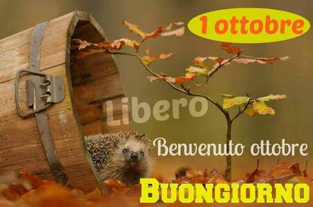 """""""1° Ottobre, Benvenuto Ottobre Buongiorno"""""""
