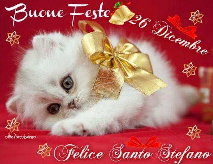 """Buone Feste e Felice Santo Stefano....."""