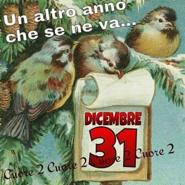 """""""Un altro anno che se ne va... 31 Dicembre"""""""
